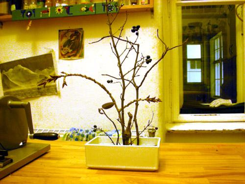 (c) 2008 Lothar Bodingbauer / Ikebana @ Home